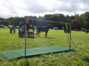 De mobiele paardenweegschaal tijdens een evenement