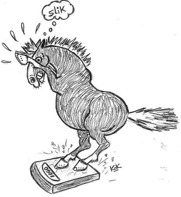 Mobiele paardenweegschaal Three Steps